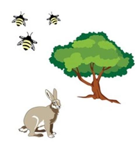 30 Really Good Ecology Essay Topics You Will Like