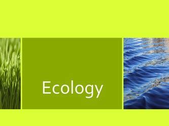 Essay on ecology population and development - wombsisterscom